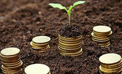 التمويل البذري